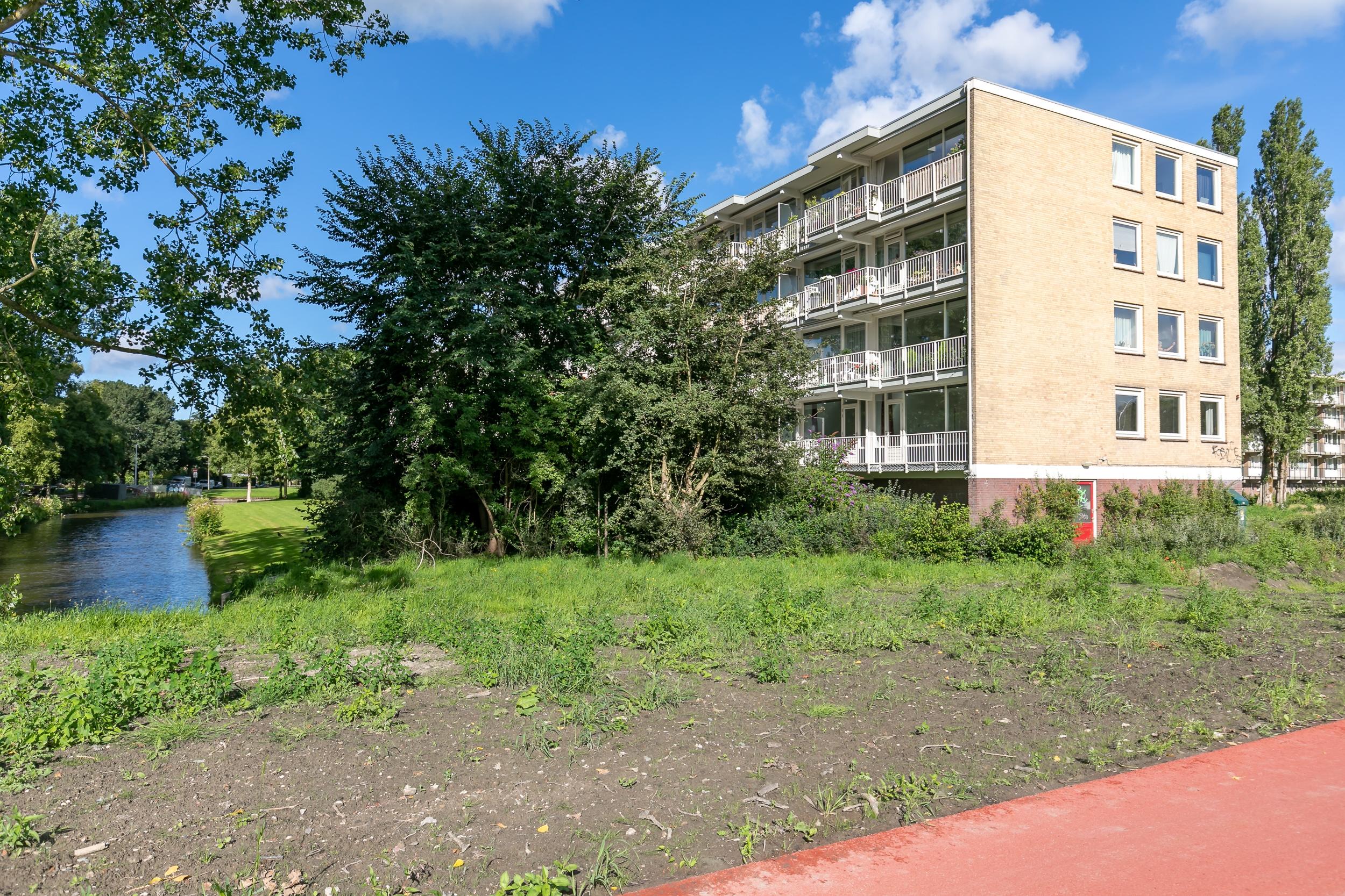 Biesbosch 19
