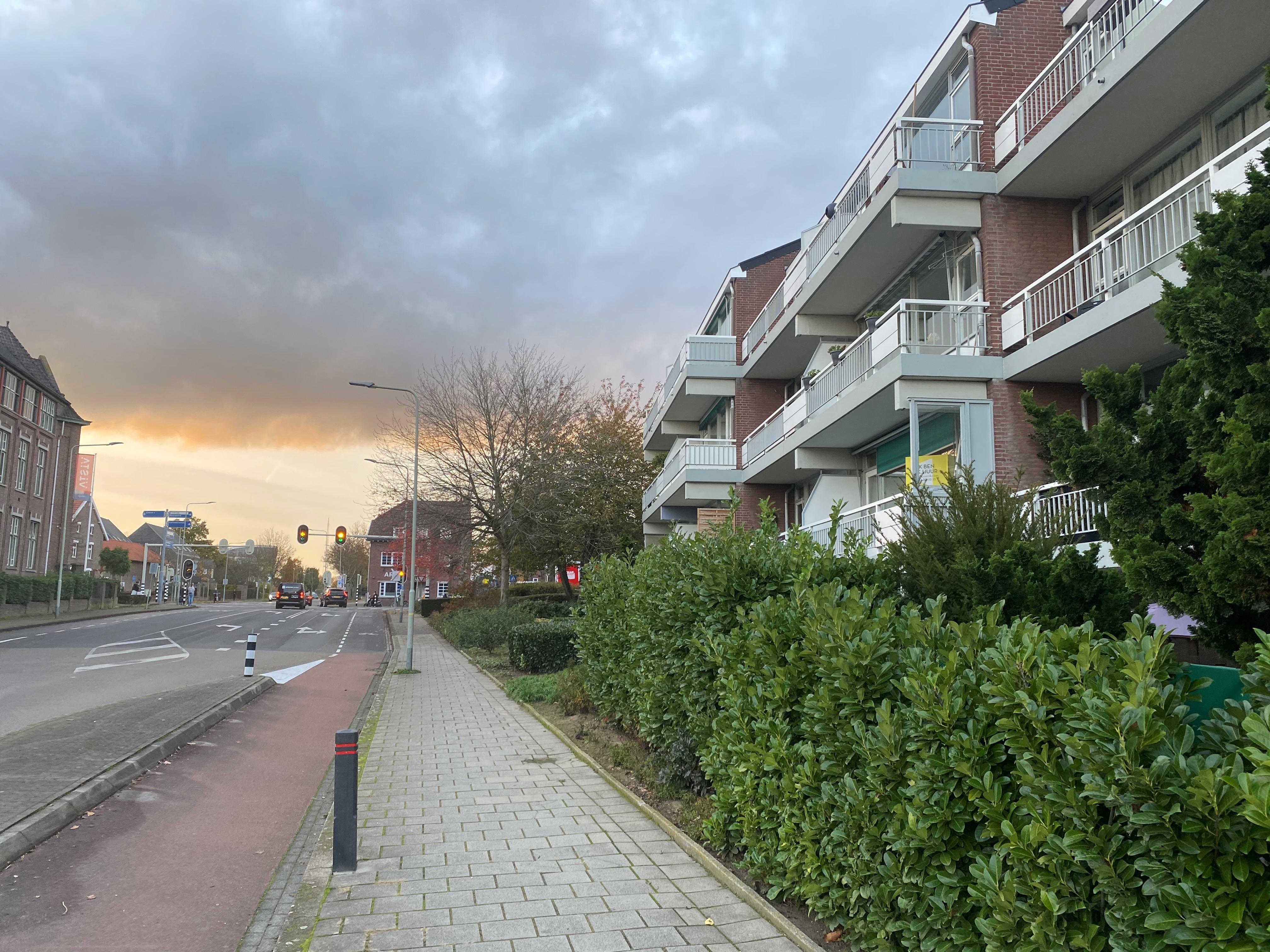 Agricolastraat 52