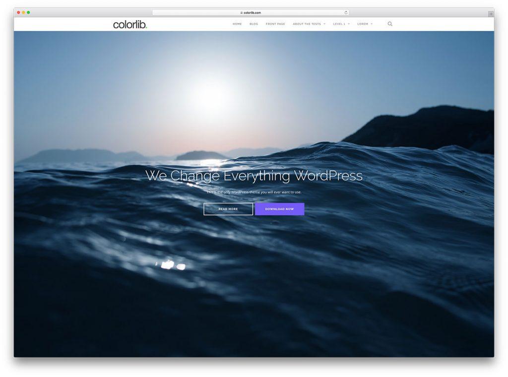 shapely-freee-fullscreen-multipurpose-wordpress-theme