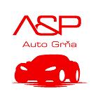 A & P - AUTO GRŇA