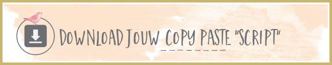 copy paste script