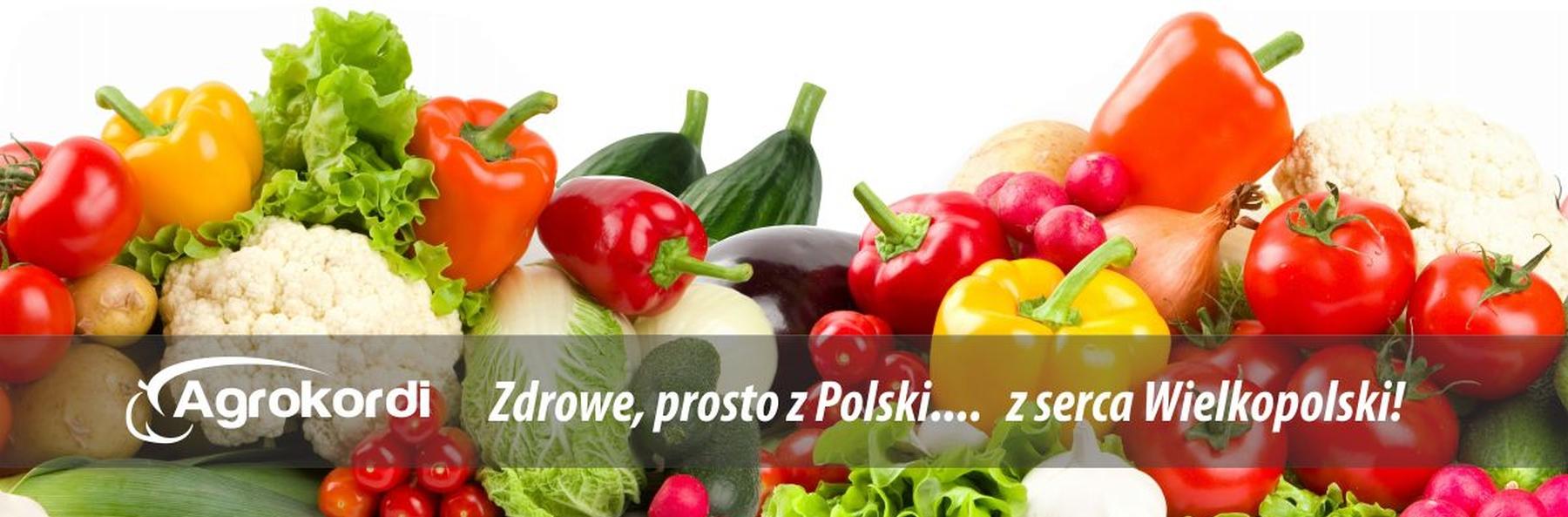 agrokordi-import-owocow-i-warzyw-