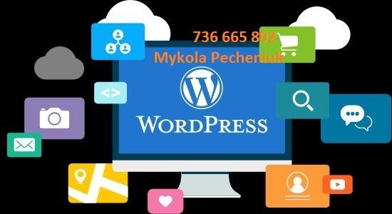 Tworzenie stron internetowych programów o Wordpress