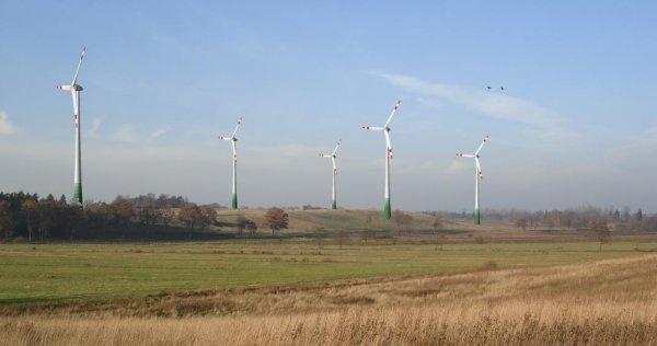 Pośrednictwo w zakupie farmy wiatrowej