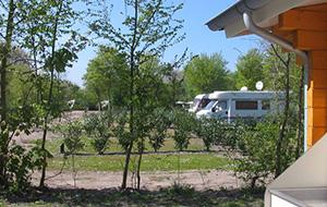 5.Tussen stad en natuur: Camping Alkmaar