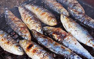 Voor visliefhebbers: Sardinhas