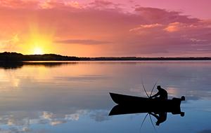 Ga vissen