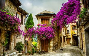 Wijn en strand in de Provence