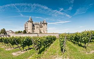 Wijn in de Loire