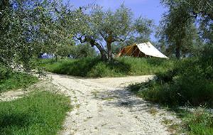 Camping Rocca di Sotto