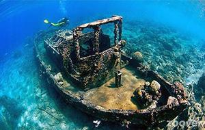 Het spannende Tugboat Dive Location