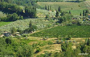 Groene glampings in Toscane