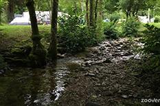 Camping Les Schlossberg