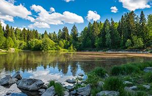 Finland, land van meren en wilde dieren