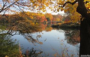 In het hart van de stad: Central Park