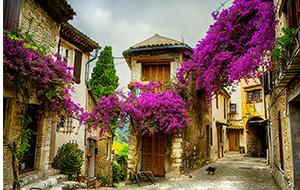 In de velden van Provence