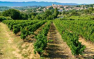 De grotten van Languedoc