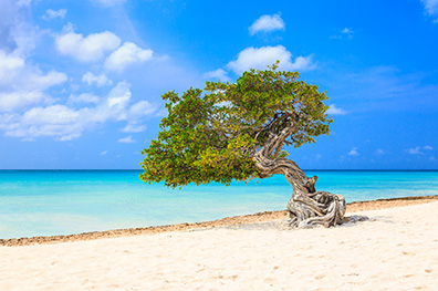 De mooiste stranden op Aruba