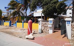 Duiken bij Dive Friends Bonaire