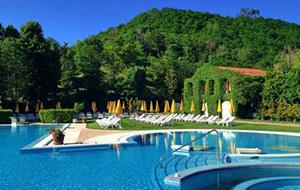 Grote keuze bij Hotel Terme Preistoriche Montegrotto in Italië