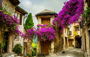 Provence: zee, bergen en mooie steden