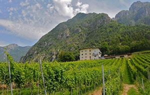 Helemaal zen in Trento, Italië