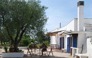 2. Bij Camping Piazza Azzurra kampeer je onder de olijfbomen in een prachtige omgeving