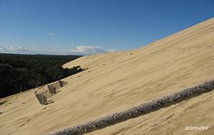 Klimmen en glijden op de hoogste duin: Dune du Pyla