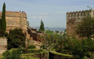 Granada Day Trip