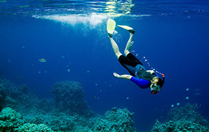 Oneindig aquarium: ga snorkelen!