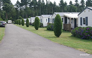 Camping Domaine des Ormes is groot maar gezellig