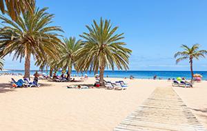 Tenerife heeft veel te bieden