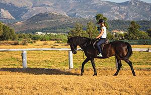 Chersonissos per paard