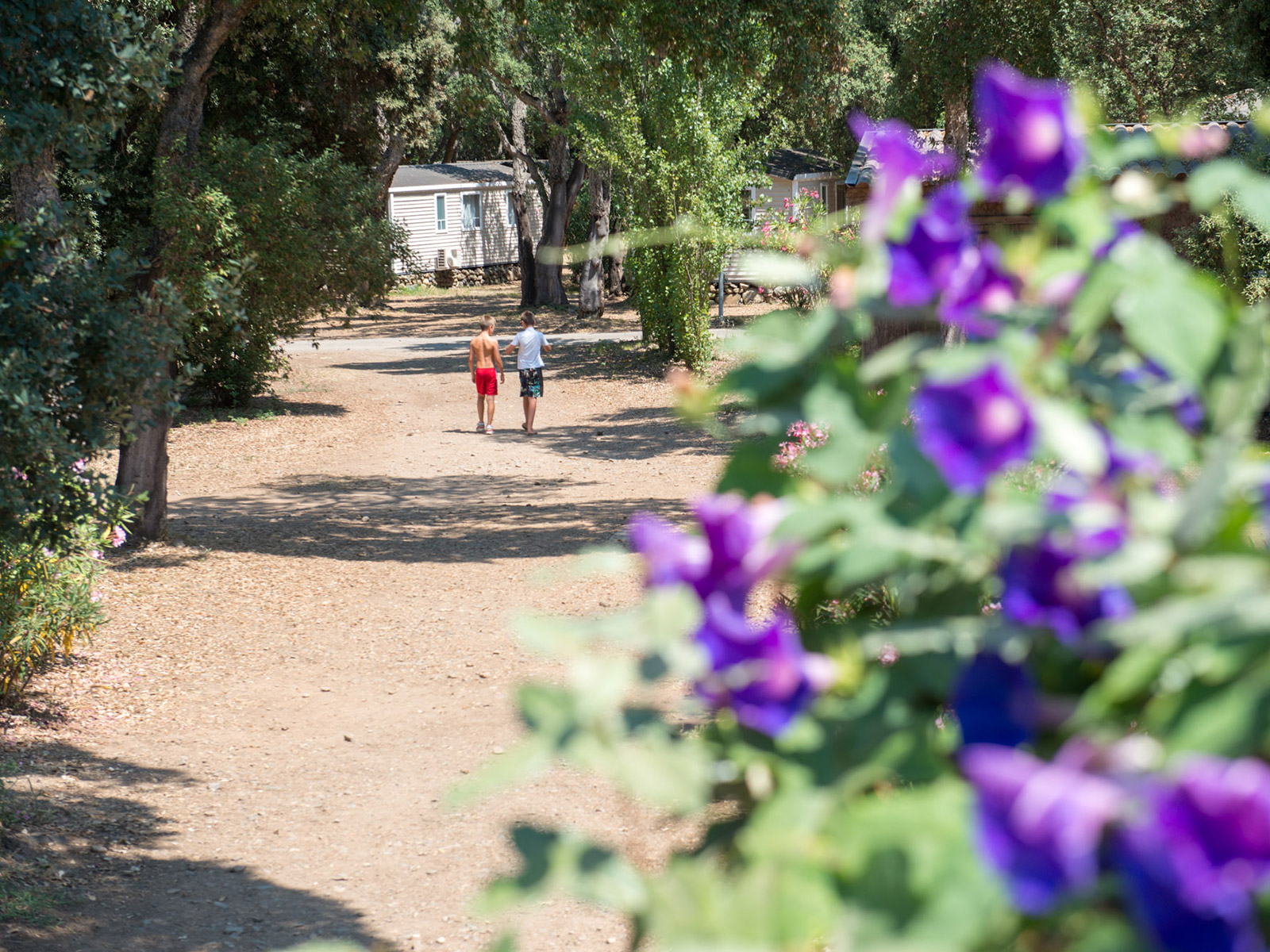 Tussen de prachtige heuvels: Yelloh Village La Campoloro