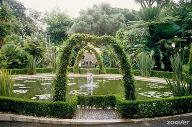 Vakantie costa adeje zoover de beste reviews 76 reizen for Botanische tuin tenerife