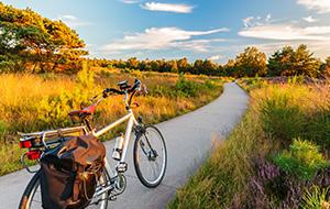 Door het natuurschoon van Gelderland