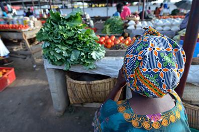 Erop uit in Gambia