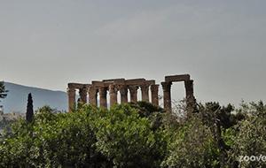 Athene mag je niet missen!
