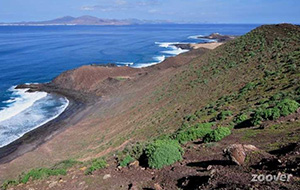 Eilandbezoek: Isla de Lobos