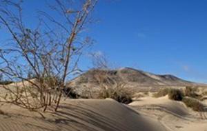 Parque Natural de Jandia