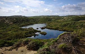 Natuurwonder S'Albufera des Grau op Menorca