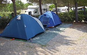 Camping Valle Gaia in Toscane ligt tussen de bomen