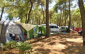 2. Kinderparadijs: Camping Cikat