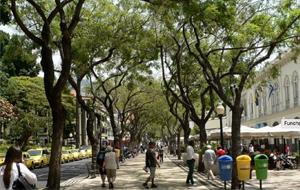 1. Ontdek de veelzijdige hoofdstad Funchal