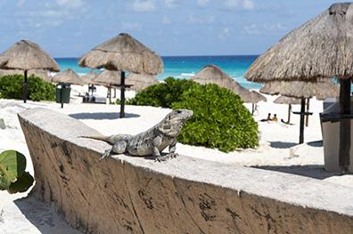 Zonovergoten Yucatán