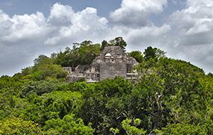 5. Calakmul, leefomgeving van vogel- en vlindersoorten