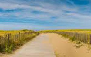 Zuid-Holland: zon, zee en strand