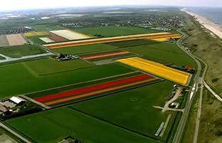 Video over Nederland
