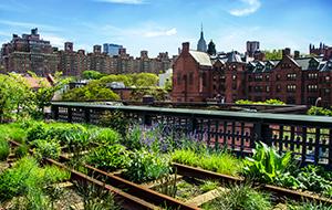 Een 'hoog' park: High Line