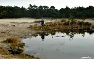 De Loonse en Drunense Duinen: de Brabantse sahara
